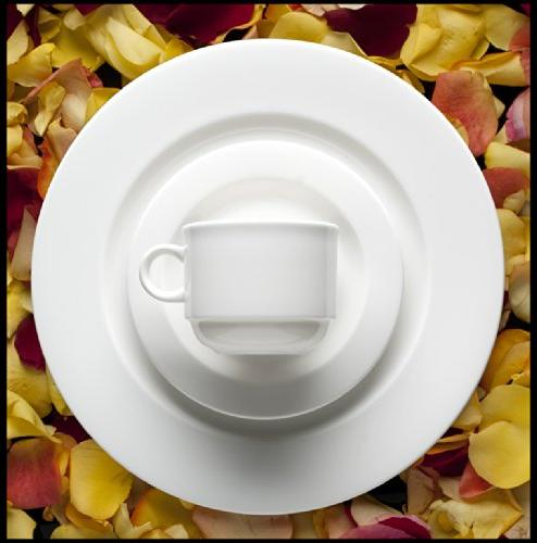 Fortessa Fortaluxe Superwhite China Dinnerware, Cassia 7-Ounce of 6