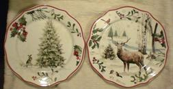 Set of 2 Better Homes and & Gardens Salad / Dessert Plates N